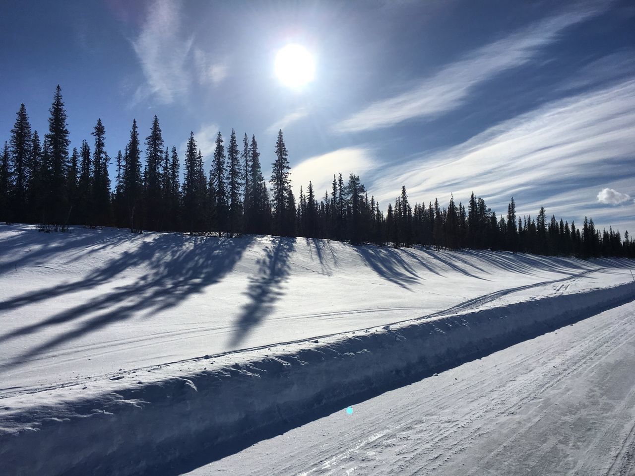 Snow Winter Cold Temperature Tree Nature Beauty In Nature Sunlight Tranquility Tranquil Scene Scenics Weather Landscape Sky Outdoors Non-urban Scene Ski Track Day No People Sunbeam Sun Sweden Sapmi Kiruna Kiruna Ortdrivaren Liselotte Wajstedt