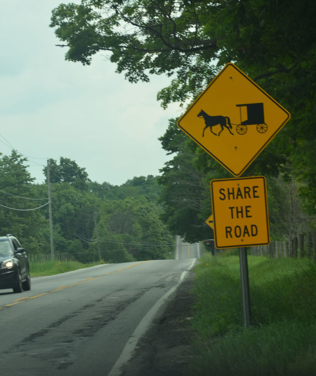 Rural traffic road sign -- share the road with Amish horse and buggies Communication Country Road Day Directional Sign Information Information Sign Landscape No People Outdoors Road Road Road Sign Rural America Sign Signboard Speed Limit Sign Text The Way Forward Traffic Tree Western Script Yellow