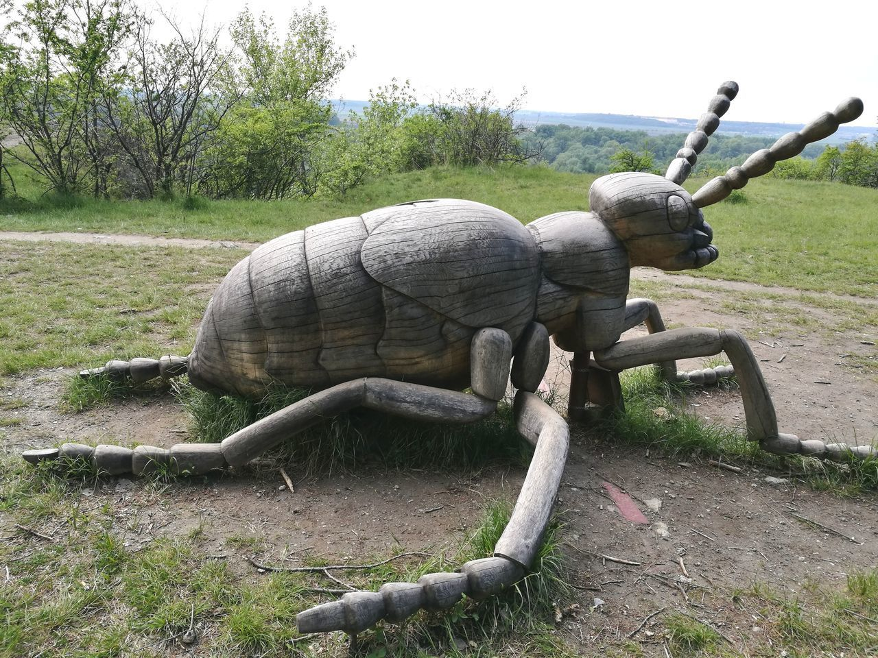 No People Animal Wildlife Reptile Nature One Animal Outdoors Day Sculpture Animals In The Wild Rhinoceros Water Animal Themes Iguana Close-up Mammal Sky Beauty In Nature Slovakia Nature Wood
