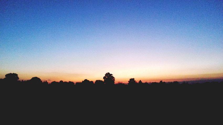Nature On Your Doorstep Sunset #sun #clouds #skylovers #sky #nature #beautifulinnature #naturalbeauty #photography #landscape Walking The Dog EyeEm Nature Lover Autumn Essex