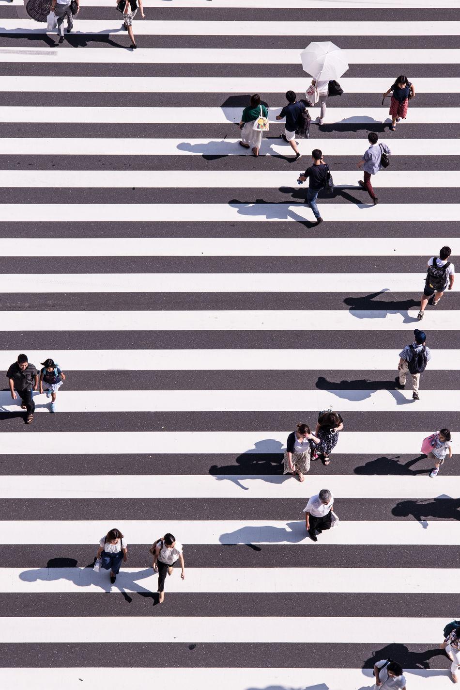 Beautiful stock photos of street photography,  Crosswalk,  Day,  High Angle View,  Japan