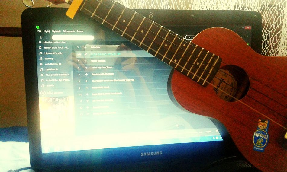 Ukulele Ukulele Lover Ukulove! Learning Paloma Only Love Can Hurt Like This