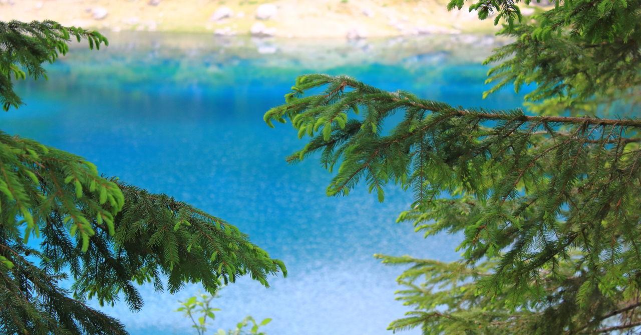 Pragsee South Tyrol Clear Sky Green Color The Week On EyeEm Blue Italy Pragserwildsee Tyrol, Water