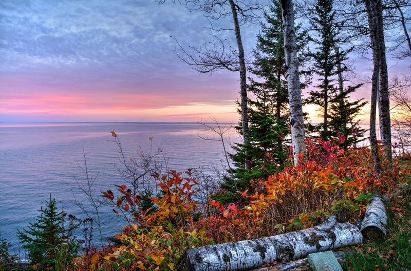 Lake Superior Sunset Nature Beauty In Nature Growth Sunset Tree Sea Scenics Plant Tranquil Scene Tranquility Outdoors No People Horizon Over Water Water Sky Day Malephotographerofthemonth Minnesota Waterfront Tourism Beauty In Nature Lake Fall Beauty