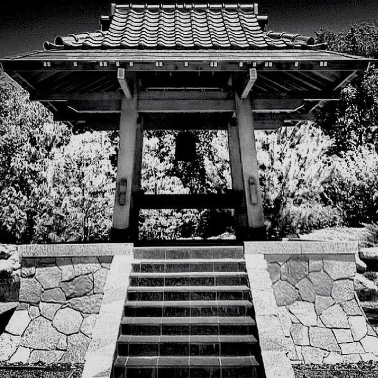 Black And White Monochrome Japanese Garden Aldofoto_bw