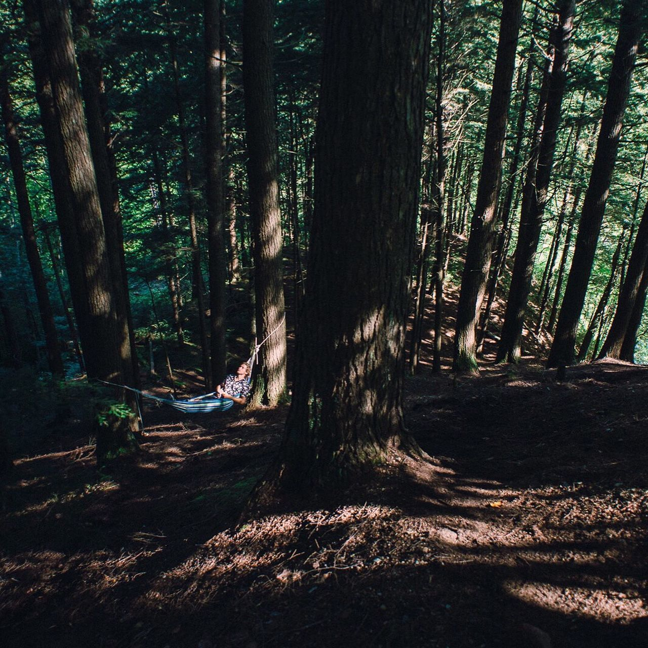 The Essence Of Summer Relaxing vibes in the Green Mountain State Vermont Camping Campvibes Hammock Life