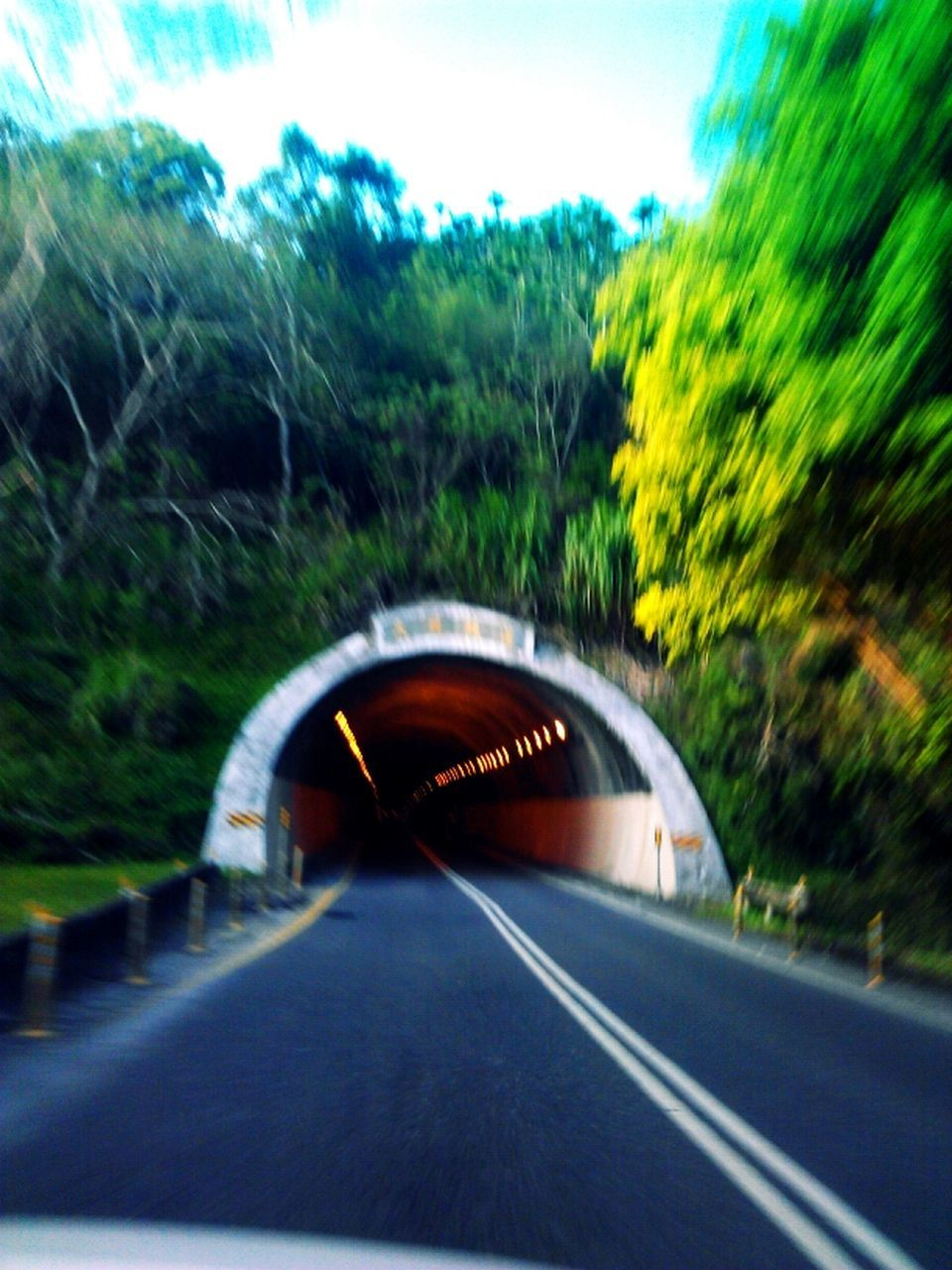 transportation, road, bridge - man made structure, the way forward, connection, day, no people, car, tree, land vehicle, growth, outdoors, nature, close-up, sky
