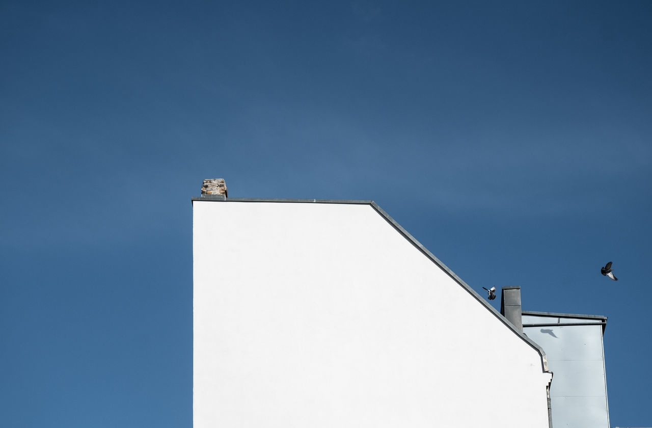 Samebuildingwithdoves Architectural Detail Architectural Feature Architecture Architecture_collection Architecturelovers Blue Sky Building And Sky Building Exterior Building Story Buildings Buildings & Sky City Life Cityexplorer Day Façade Minimalism Minimalist Minimalobsession No People Outdoors Simplicity Sky
