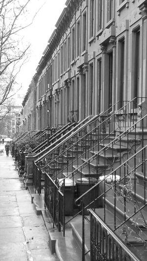 Street where you live Park Slope, Brooklyn Walking Around Urban Landscape