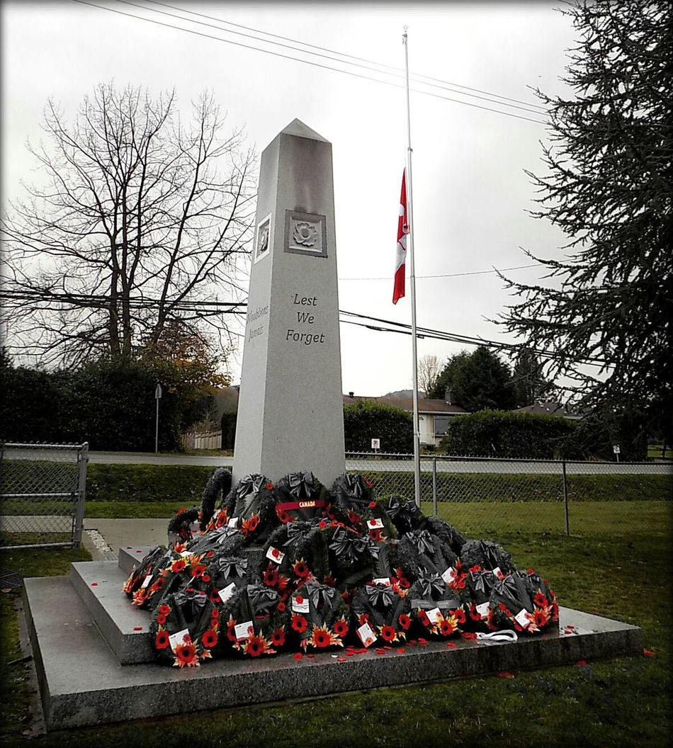 Lest we forget No People Outdoors Tree Day Sky Military Flag Poppies  Cenotaph Remembrance Day 2016 EyeEm Gallery RCAF Lestweforget My Year My View