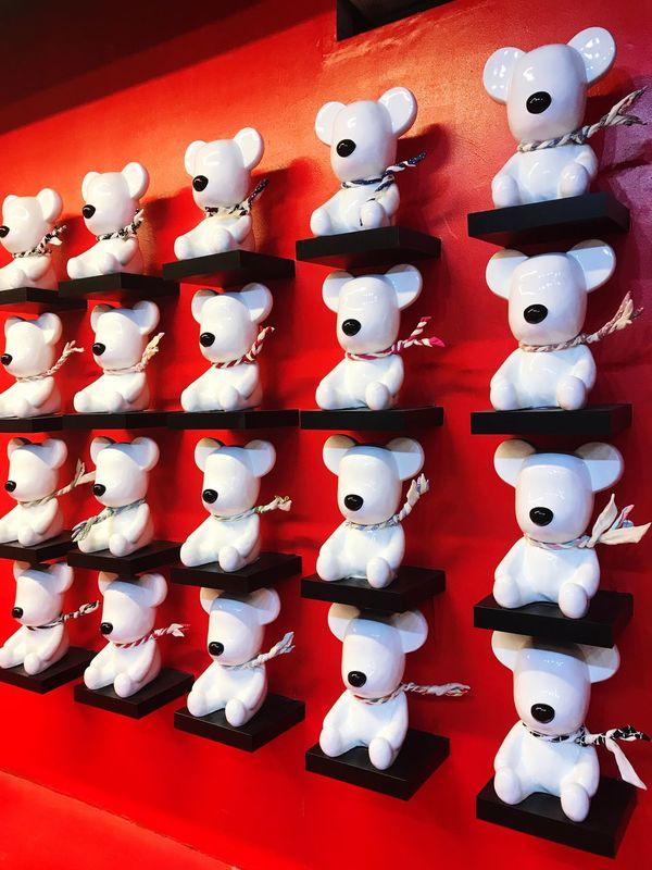Bear 🐼🐻🐨