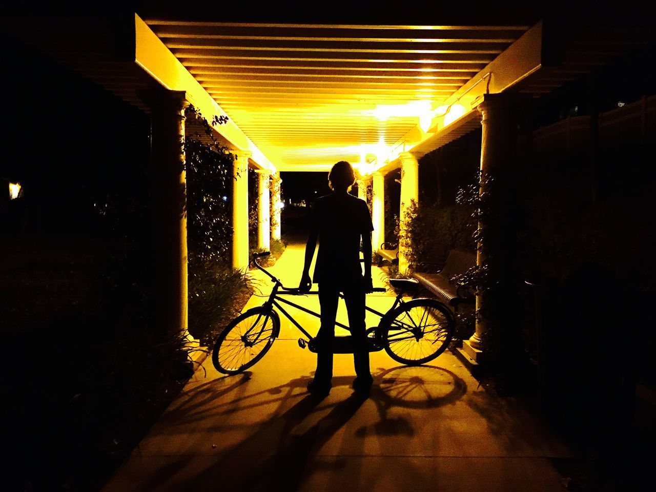 Bicycle Real People Land Vehicle Full Length Mode Of Transport Transportation Silhouette Leisure Activity Rear View Men Night Standing Cycling Lifestyles Illuminated One Person Architecture Outdoors Nature