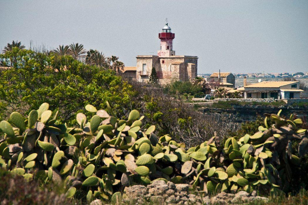 Taking Photos Hello World Lighthouse Nature Nature_collection Sicily Plants Sea Life Sea Sea View Plemmirio - Pillirina 🐠
