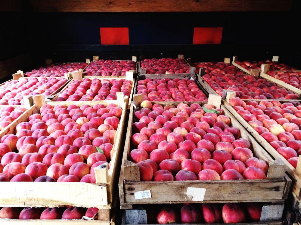 Peach Peaches Peach! Peachyperfection Peachesandcream Fruit Fruits Fruits ♡ Tasty Tasty Fruits