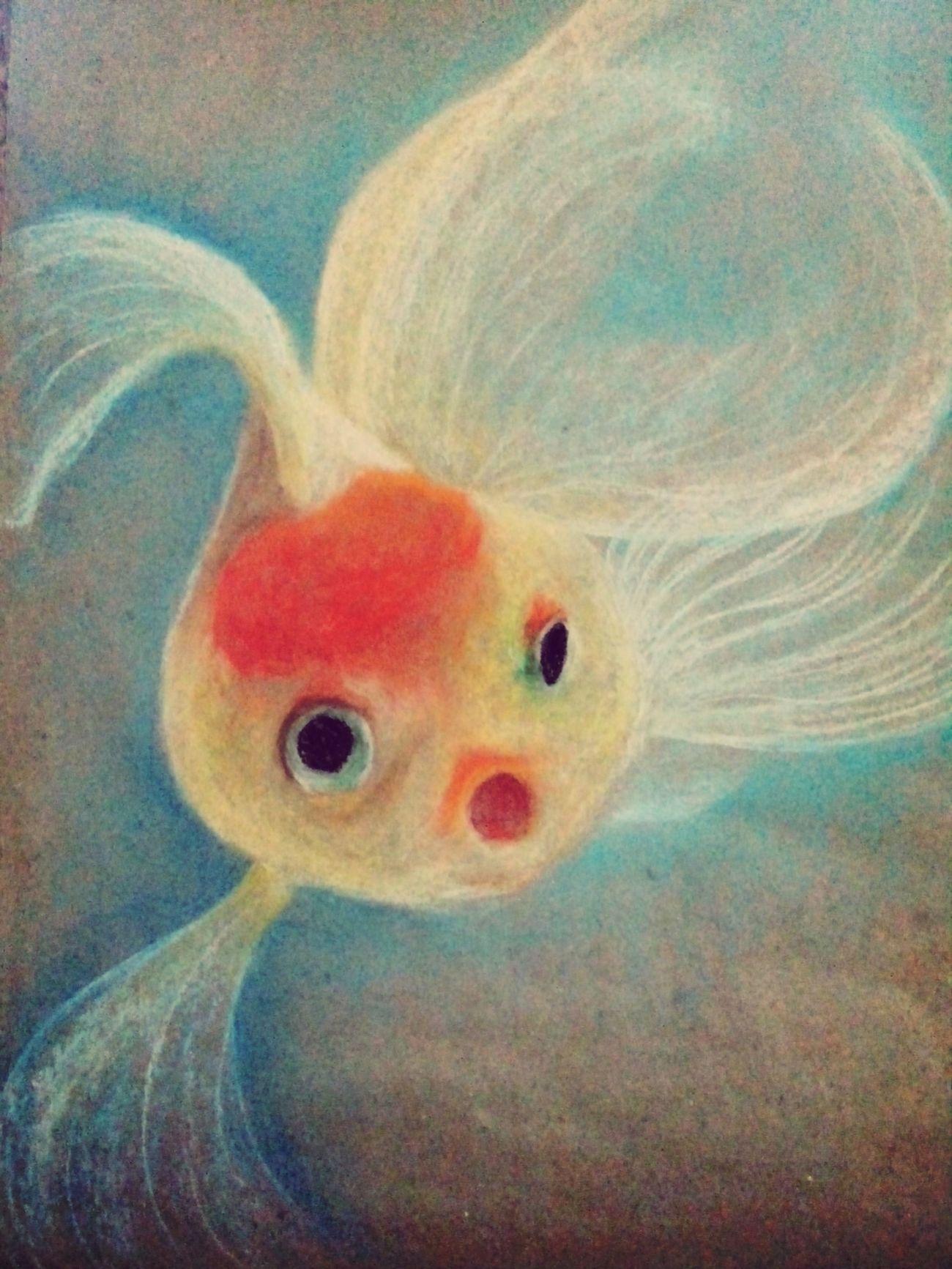 Art Fish Soft Pastels