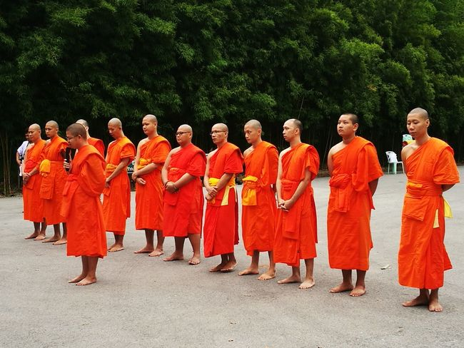 Buddies Culture And Tradition Buddhist Monks Buddhism Thailand Cultures
