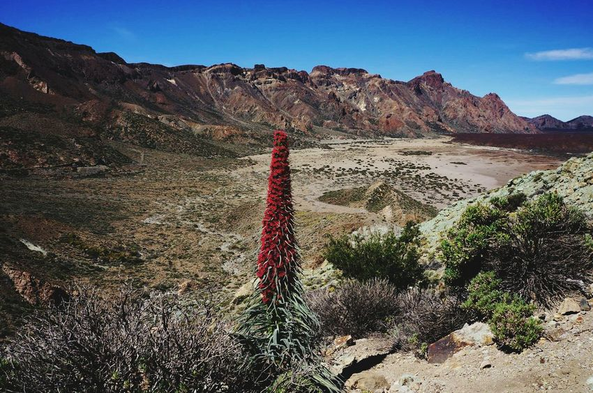 Desert Nature Outdoors Landscape No People Mountain Sky Day Tenerife Teide National Park