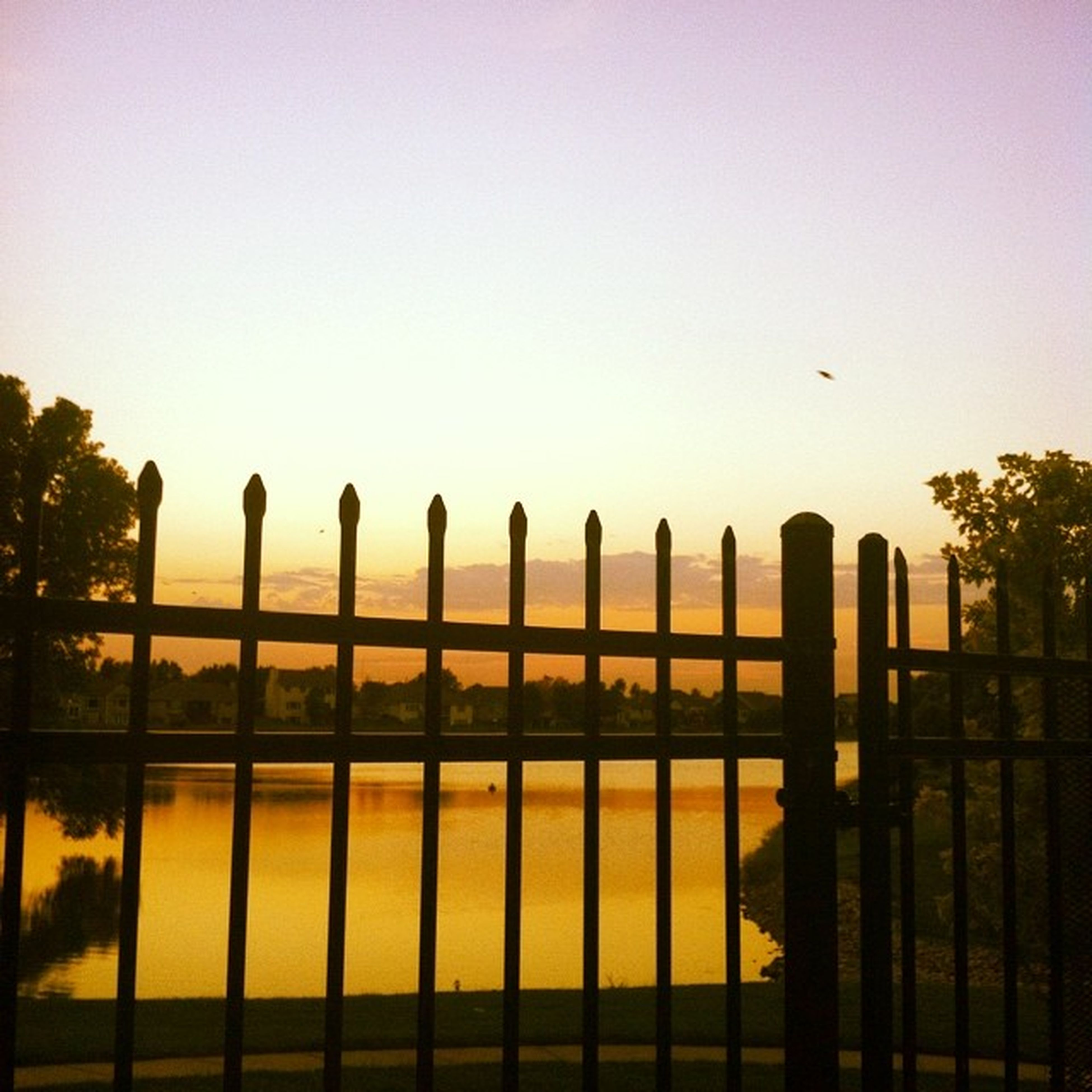 clear sky, sunset, fence, built structure, silhouette, architecture, tree, sky, protection, copy space, safety, nature, tranquility, railing, outdoors, bird, security, building exterior, no people, tranquil scene