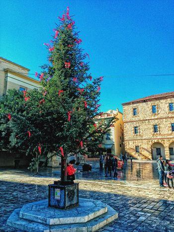 Christmas Tree Christmas Nafplio Greece
