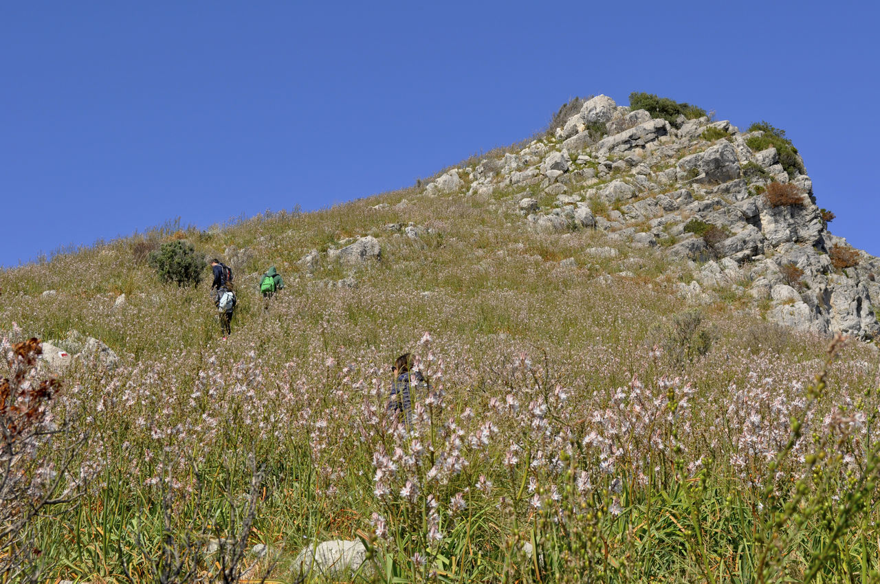 Punta Campanella Adventure Beauty In Nature Clear Sky Flower Grass Hiking Mountain Outdoors Plant Real People Rock - Object Scenics Sky Walking