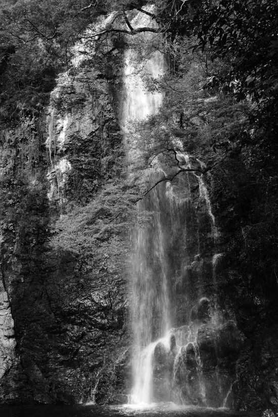 Taking Photos Blackandwhite EyeEm Nature Lover Water Falls 滝