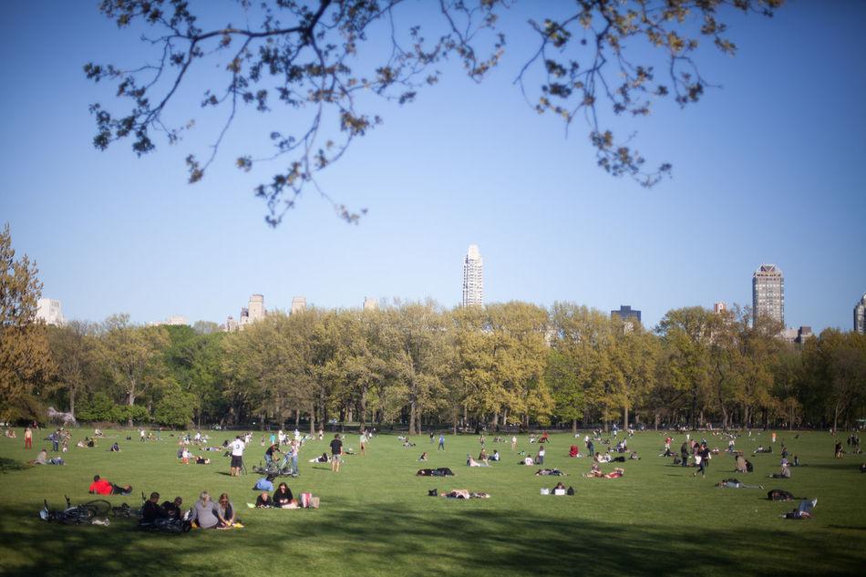 Beautiful stock photos of park, Building Exterior, City, City Life, Clear Sky