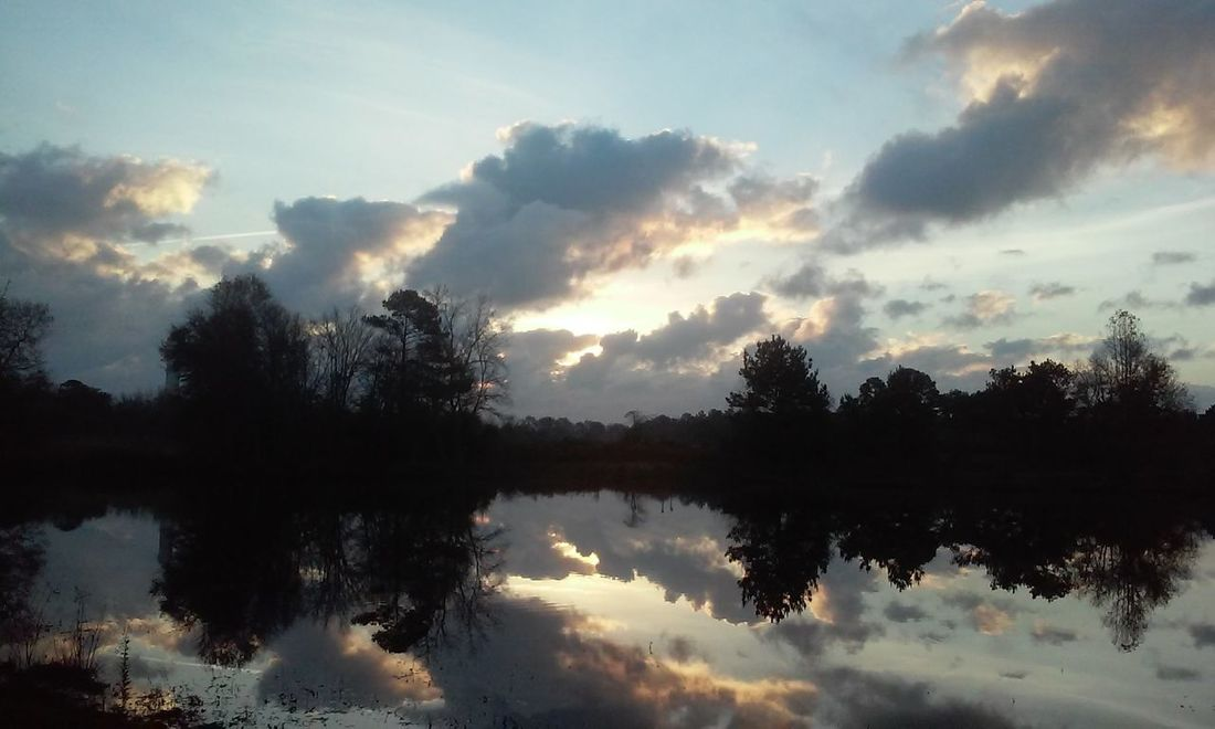 EyeEmNewHere Reflection Tree Lake Cloud - Sky Water Sky Nature WoodLand Forest Dawn Outdoors No People Morning Tranquility Scenics Fog Beauty In Nature Day Multi Colored