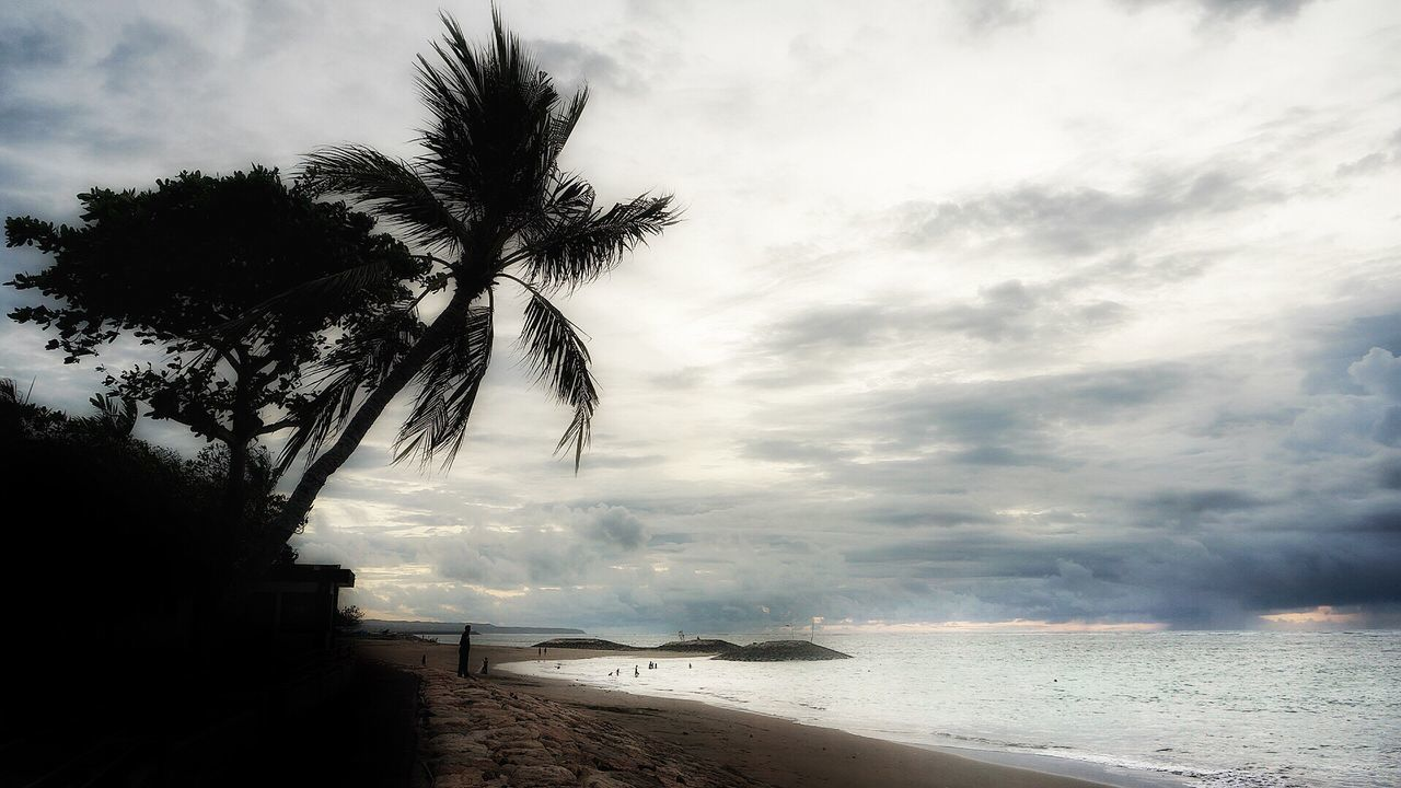 sea, beach, water, scenics, beauty in nature, tree, sky, palm tree, nature, cloud - sky, sand, tranquil scene, tranquility, no people, outdoors, horizon over water, day, wave