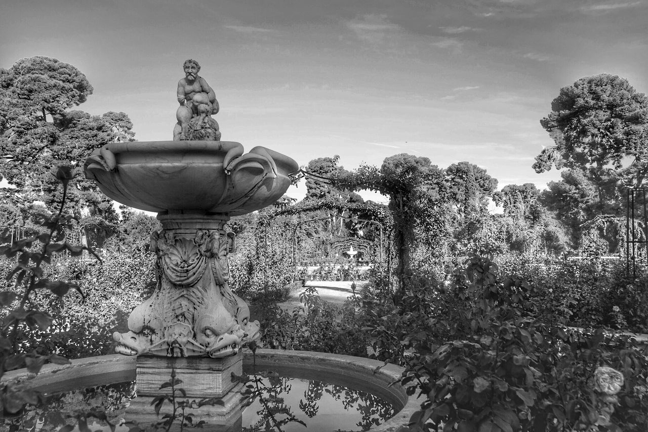 Creativity Art And Craft Statue Sculpture Human Representation Tree Growth No People Plant Sky Fountain Day Outdoors Low Angle View Sculpted Nature Garden Garden Photography Madrid Tree Photography Blackandwhite Black And White Reflex Nikon