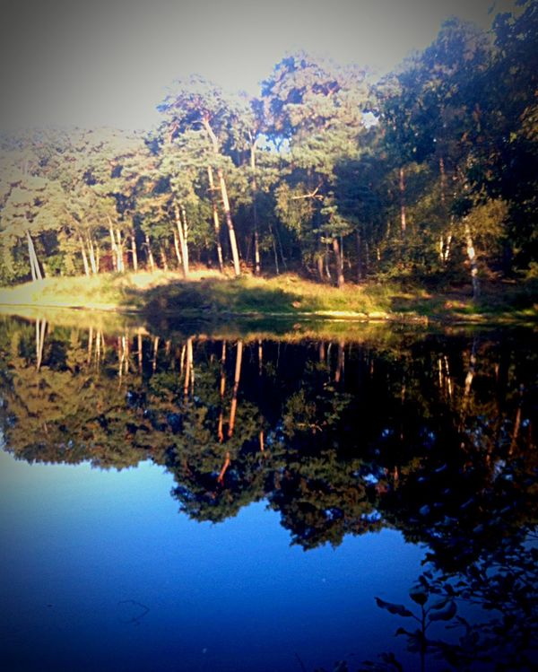 Water Reflections OpenEdit EyeEm Best Shots EyeEm Nature Lover Nature Taking Photos