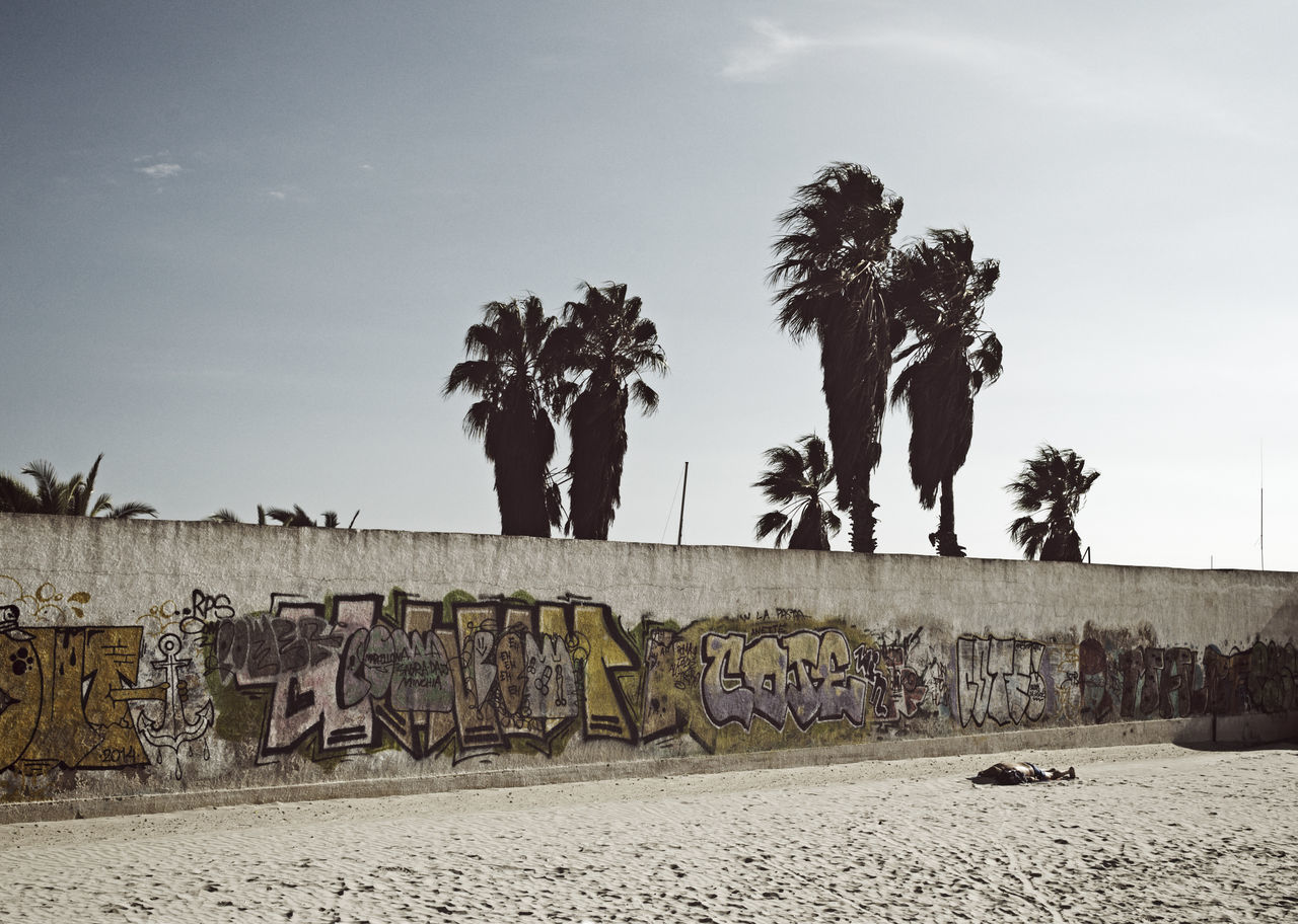 graffiti wall and sandy beach Beach Border Day Graffiti Wall Lying Down Outdoors Palm Tree Palm Trees People Sand Sandy Sky Spray Paint Tags Tranquil Scene Tranquility Wall