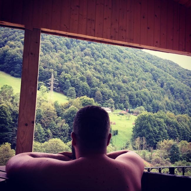 Nature Tree Lifestyles Rear View Person WoodLand Tranquility Jacuzzi  Mountain