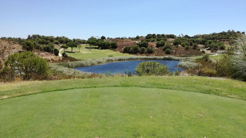Golf Course Tranquil Scene