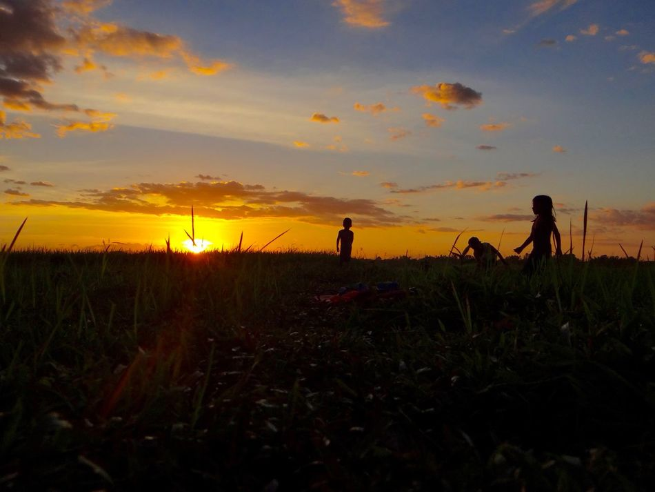 Sunset playtime Agriculture Beauty In Nature Children Playing Cloud - Sky Field Landscape Nature Outdoors Philippines ❤️ Real People Scenics Silhouette Sky Sky And Clouds Sun Sunset Tranquil Scene Tranquility