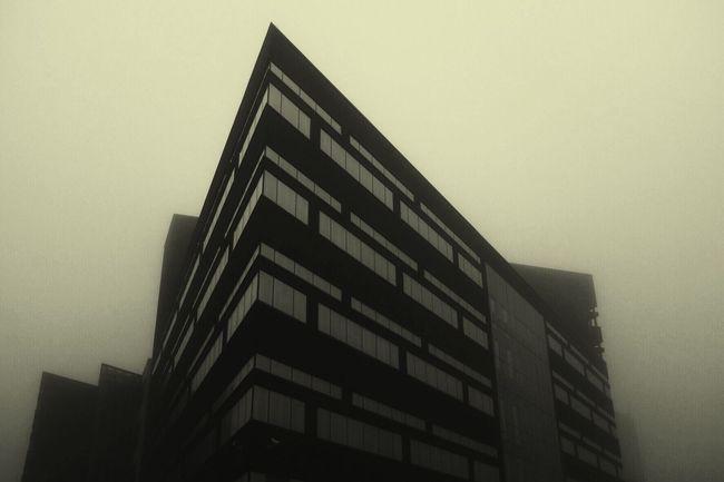 Showcase: February Architecture Foggy Monochrome