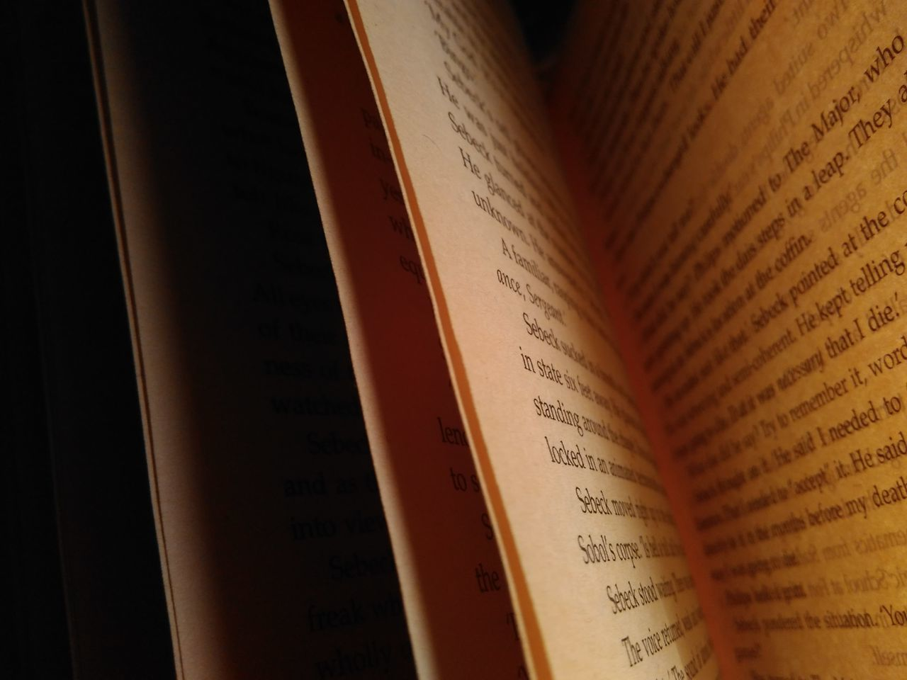 Booklover Close-up Indoors  Light And Shadow Peace Photography