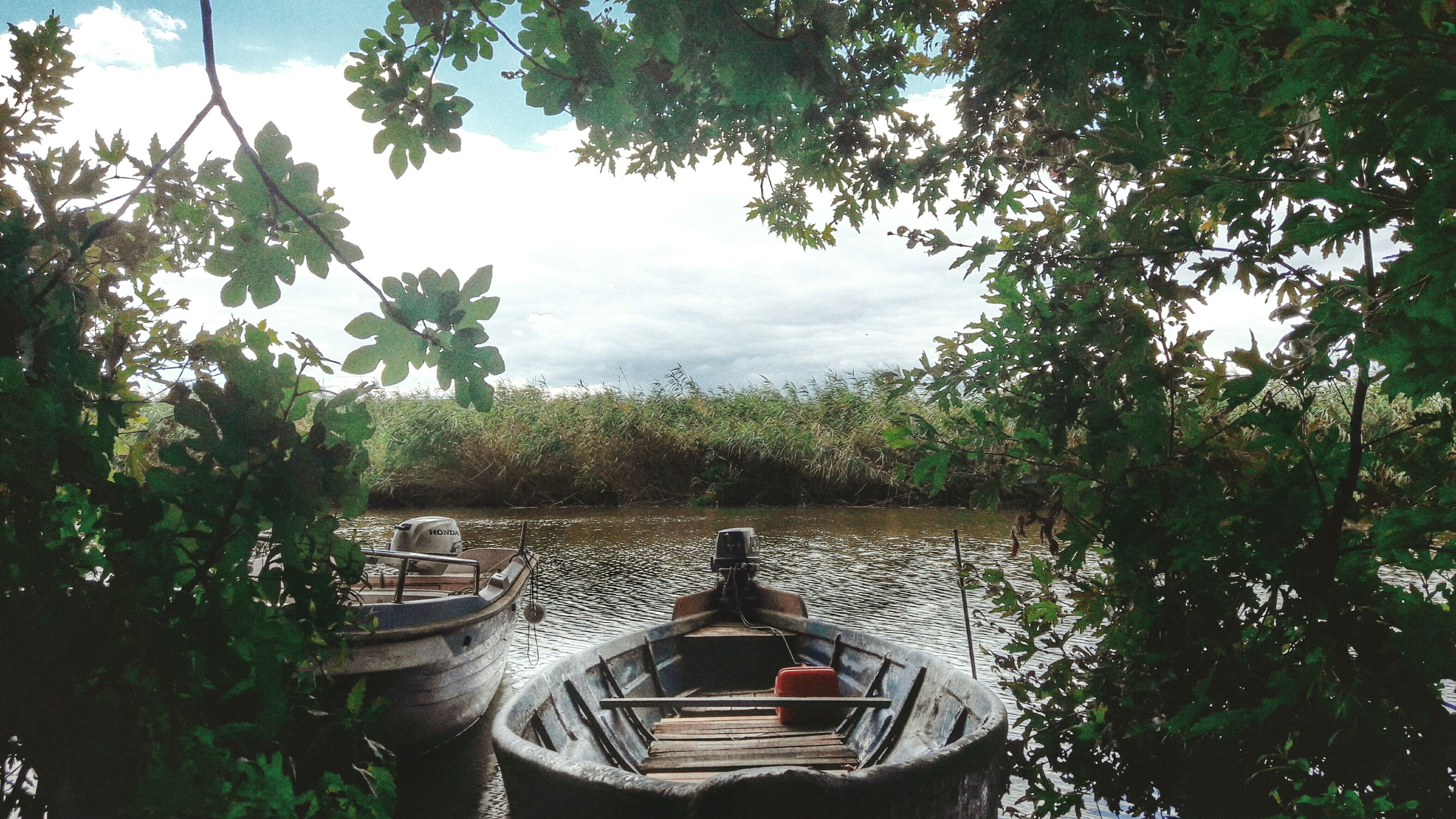 water, tree, nautical vessel, boat, mode of transport, lake, tranquility, tranquil scene, sky, nature, scenics, beauty in nature, absence, idyllic, outdoors, day, no people, empty, growth, cloud - sky, calm, non-urban scene, cloud