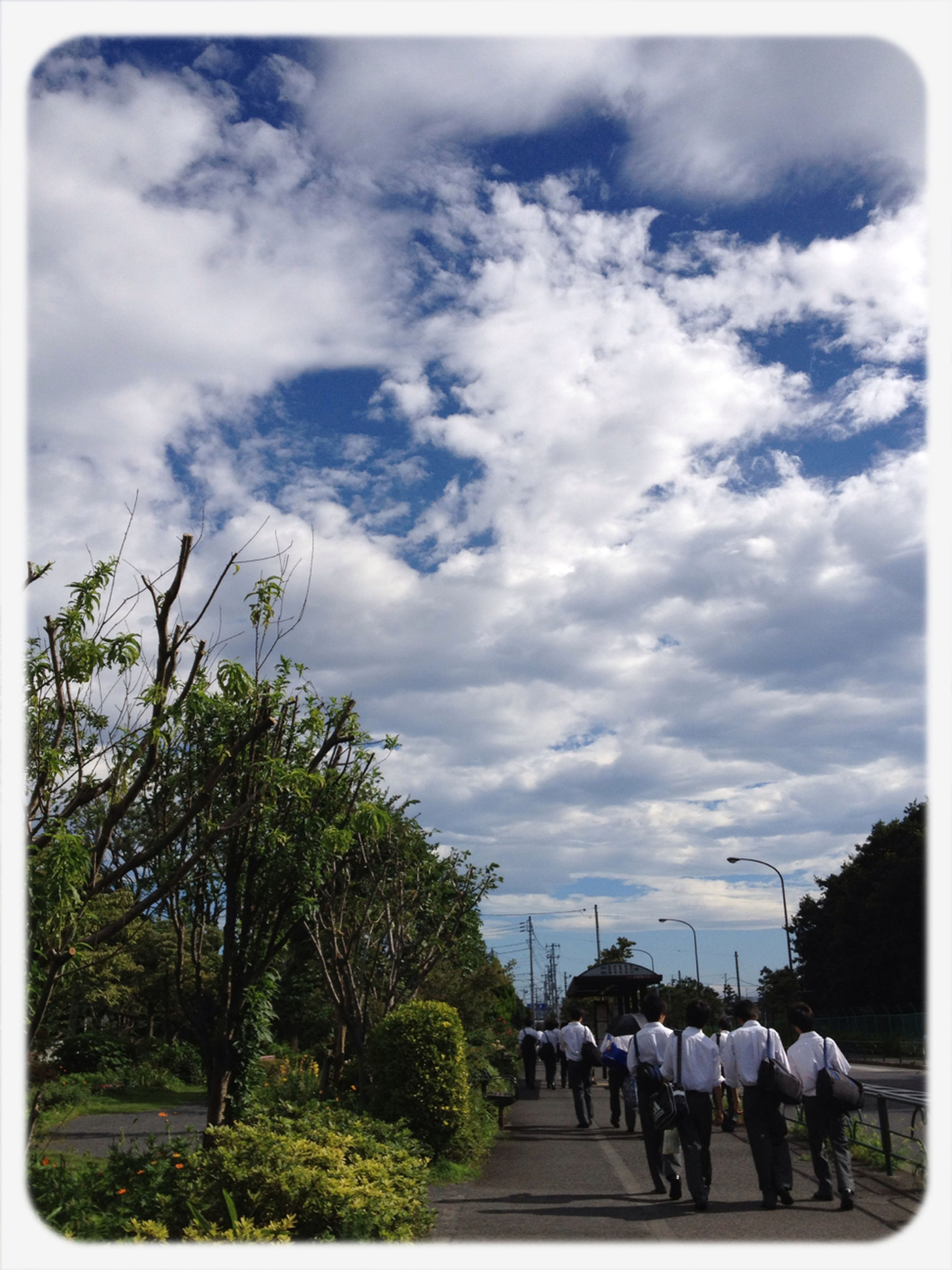 transfer print, sky, men, large group of people, lifestyles, person, tree, cloud - sky, leisure activity, auto post production filter, cloud, mixed age range, walking, togetherness, cloudy, transportation, day, group of people, medium group of people