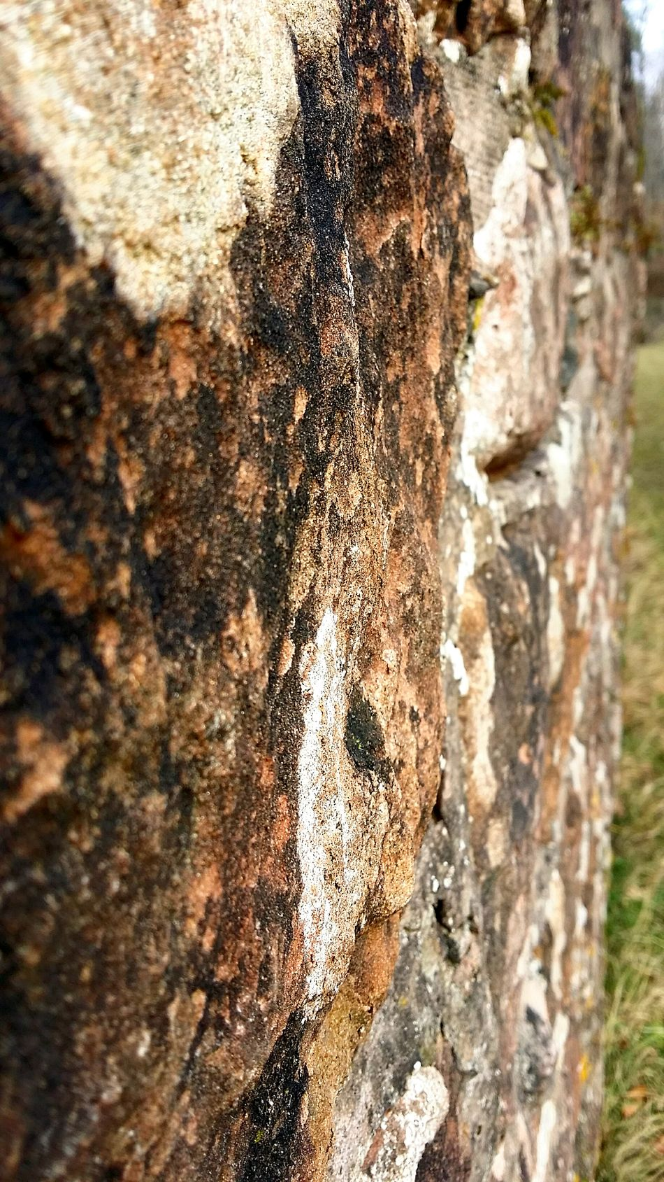 Close-up Nature Outdoors Textured  Rough Rock Wall Rock Solo Women Travelers SoloTraveller Solotraveler Kaiserslautern Germany My Travel Germany 🇩🇪 Deutschland