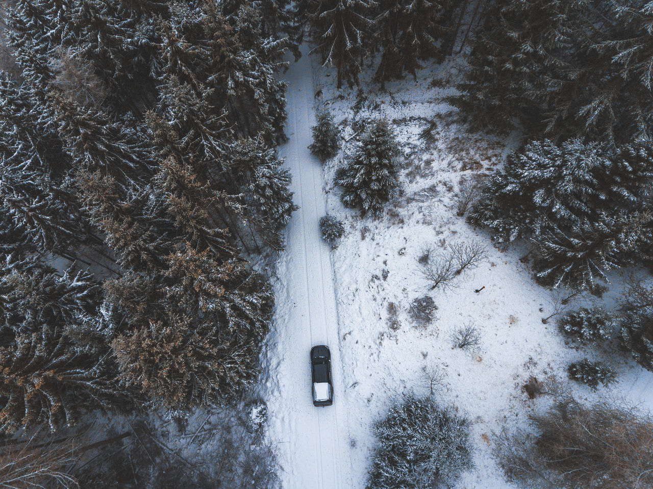 adveture areal view ArealPhotography beauty in Nature cold temperature day forest Nature no people offroad offroad adventure outdoors snow SUV Tranquility Transportation Travel Tree truck Weather Winter Flying High