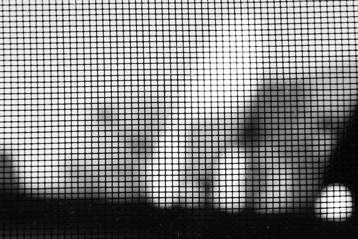 Architecture Backgrounds Close-up Day Full Frame Indoors  Net No People Pattern Raster Rasterized Textured