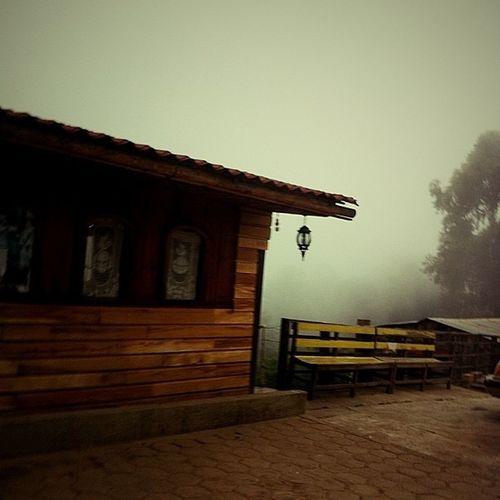 San Jose Del Pacifico Mist Oaxaca México  I Love It ❤ Beautiful Nature