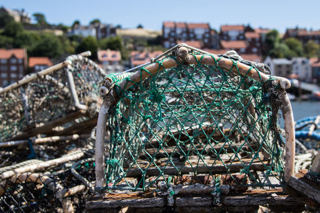 Crab Nets in Whitby Harbour Crab Crab Nets Fishing Holday Holiday Nets Seaside Shrimping Whitby Whitby Harbour Yorkshire