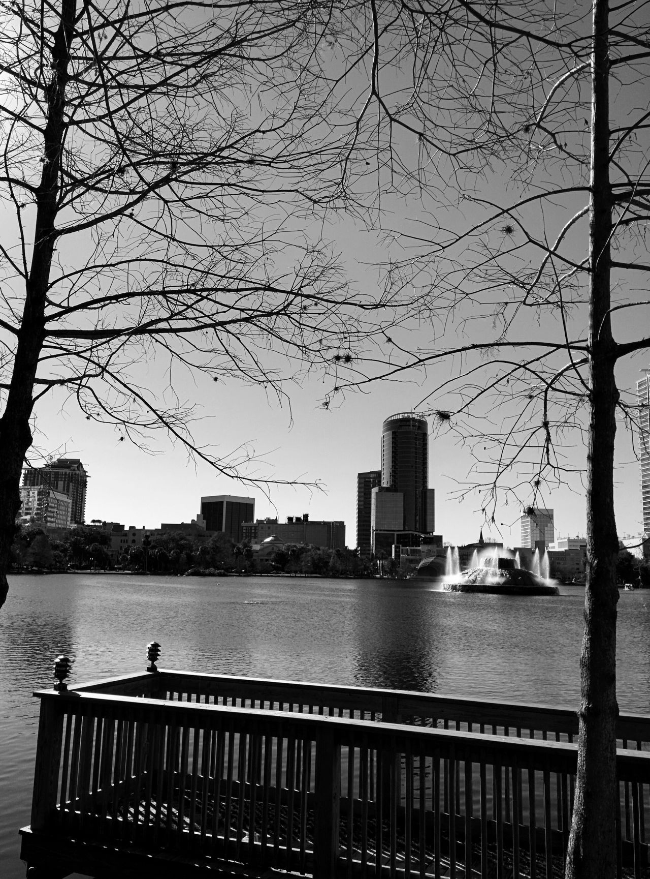 Lake Eola Park Downtown Building Exterior Architecture City Outdoors Water Day Sky Urban Skyline Nature No People Street Leonidas Silhouette Blackandwhite Built Structure Bridge - Man Made Structure Architecture
