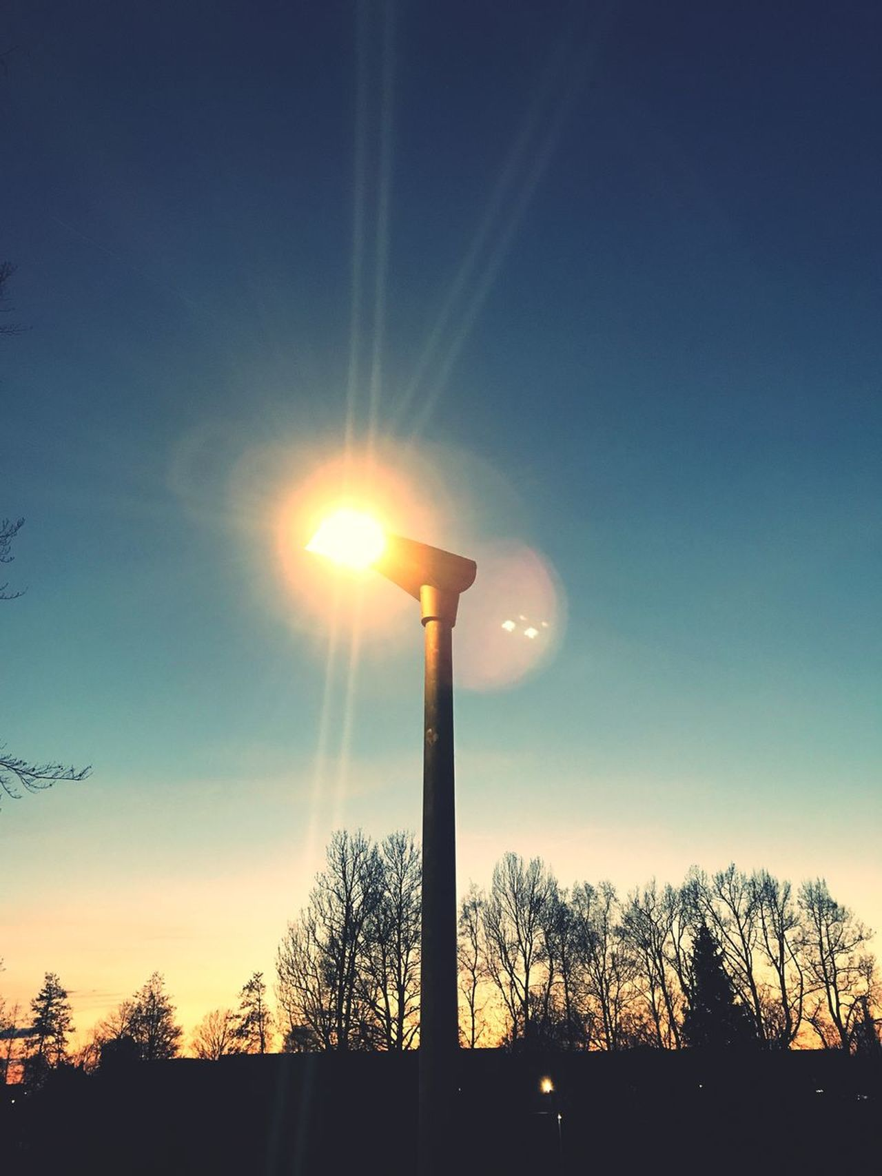 Silhouette Sunset Sky Lighting Equipment Street Light Illuminated Sun Low Angle View Nature Tree Outdoors Fuel And Power Generation No People Sunlight Blue Beauty In Nature Scenics Moon Clear Sky Day