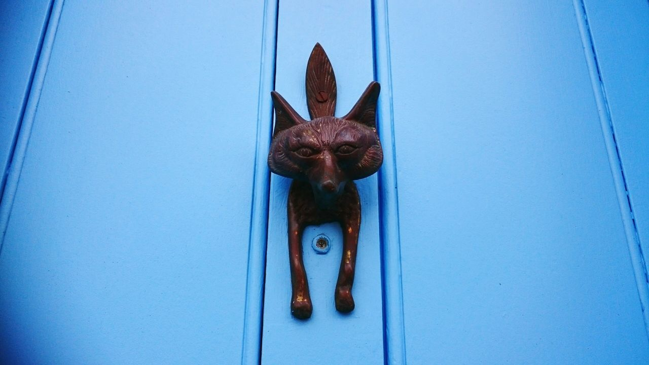 Showcase: February Getting foxy in Columbia Road Front Door Blue Door Knocker Close-up Home Ownership Doorknob Wood - Material No People Accessibility Fox Brass Outdoors Animal Representation Arrival Old-fashioned London - England Copy Space Uk Photography EyeEm Best Shots Eye4photography  From My Point Of View Perspective EyeEm Gallery