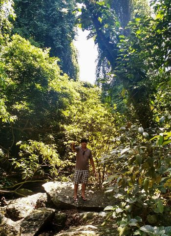 Cachoeira Trēs quedas.