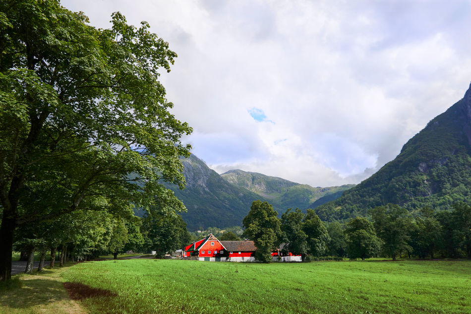 Romantic scenery Beauty In Nature Cloud - Sky Color Colorful Colors Day Green House Landscape Mountain Mountain Range Nature No People Norway Norwegen Outdoors Red Red Lips Rosendal Scenery Sky Sony A6000 Sonystreet Tree Wide