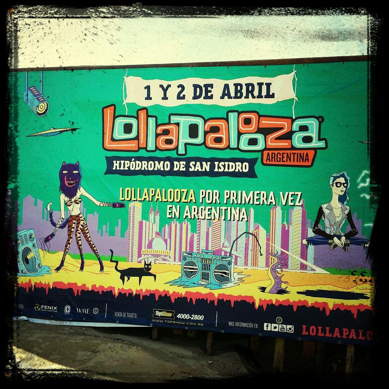 Lollapalooza!!