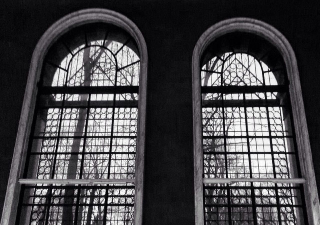 Museum Milan Natural Sciences Museum Art Photography Windows Blackandwhite Architecture Trees Sky Winter